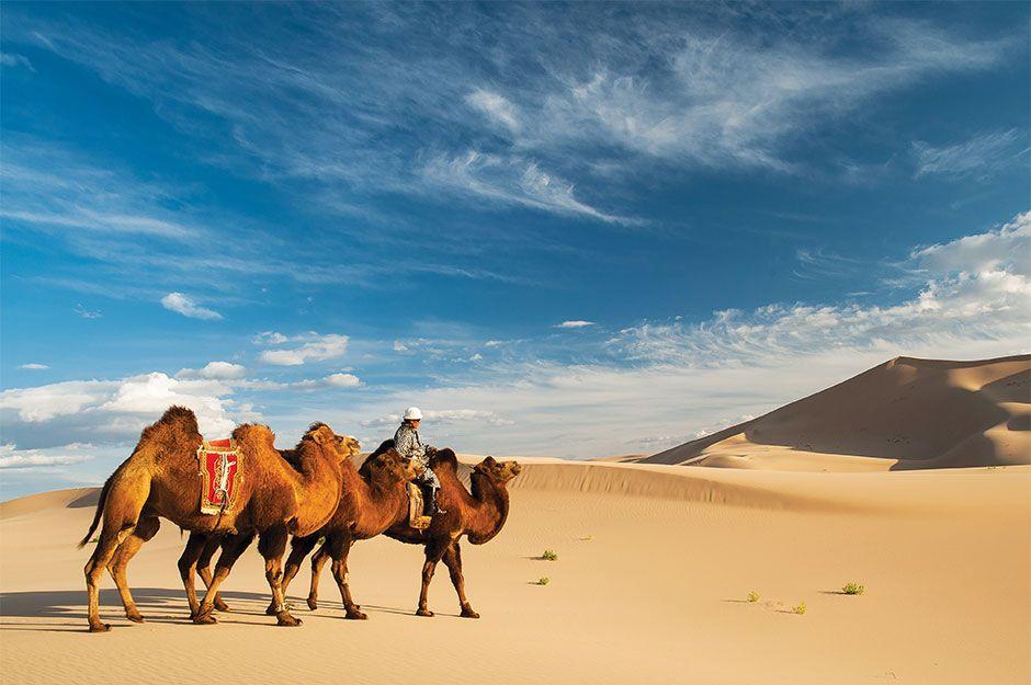 Khongor-sand-dunes-3.jpg